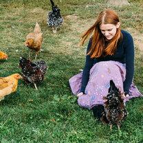 featured_Slow Food Kolumne Hühner und Eier_20150330