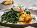 Rahmspinat mit Kartoffeln und pochierten Ei auf einem Teller serviert. Das Ei ist angestochen und das Eigelb läuft über die Kartoffeln.