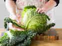 Gemüseguerilla Wirsing-1