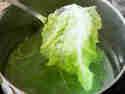 Gemüseguerilla Wirsing-6