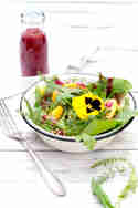 Sommersalat mit Mango © Foodlikers