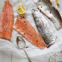 slowfood-fisch-nachhaltig-oekologisch-featured